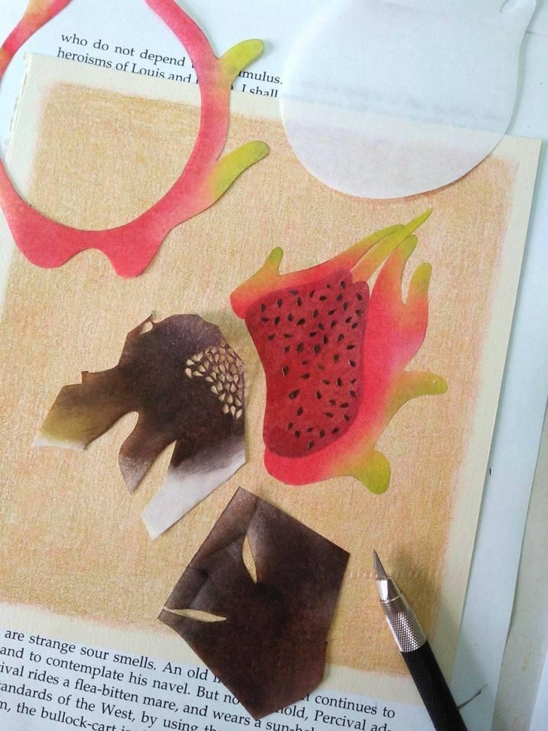 tropical fruits illustration_Yodchat Bupasiri_ยอดฉัตร บุพศิริ14