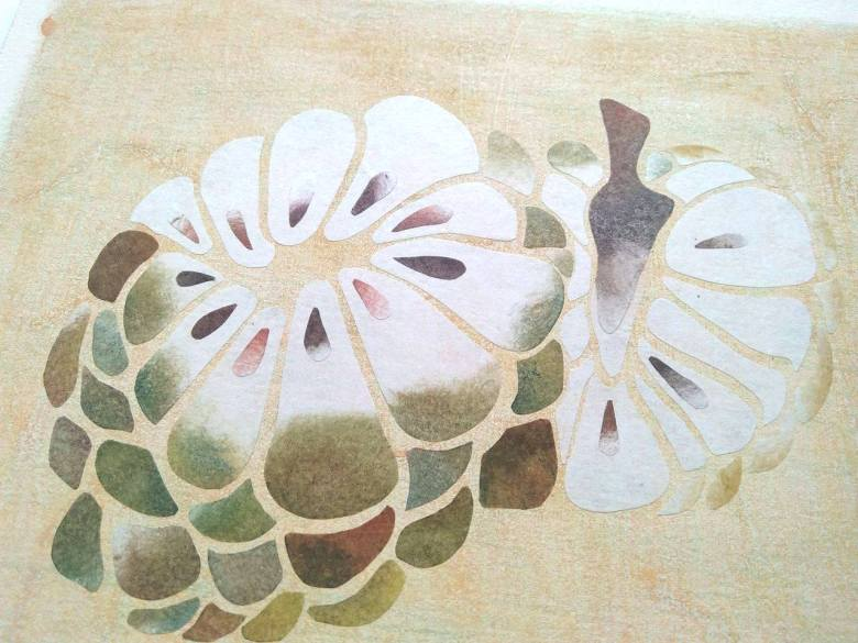 tropical fruits illustration_Yodchat Bupasiri_ยอดฉัตร บุพศิริ15