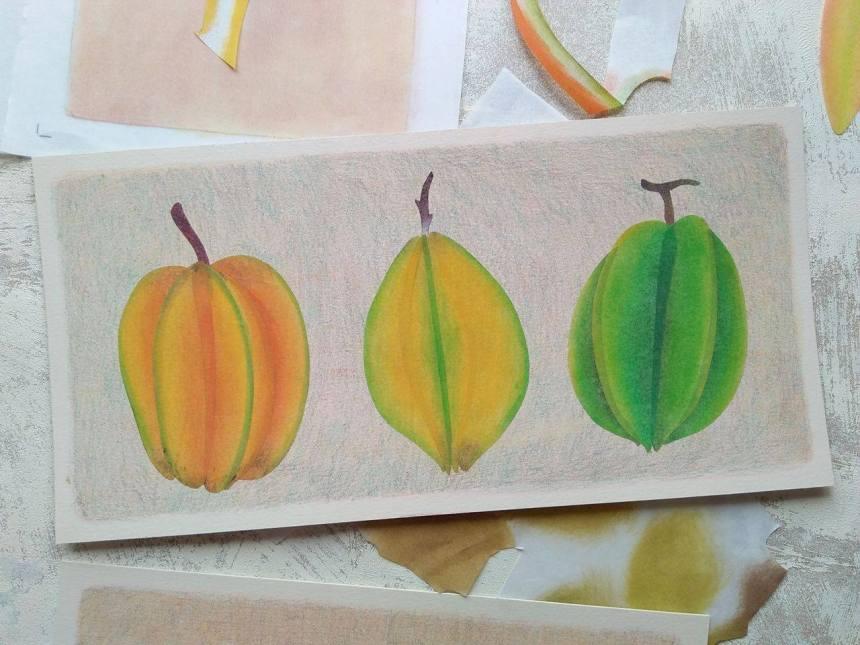 tropical fruits illustration_Yodchat Bupasiri_ยอดฉัตร บุพศิริ23