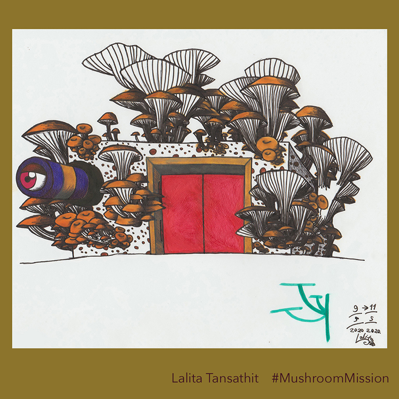 LalitaTansathit_MushroomMission